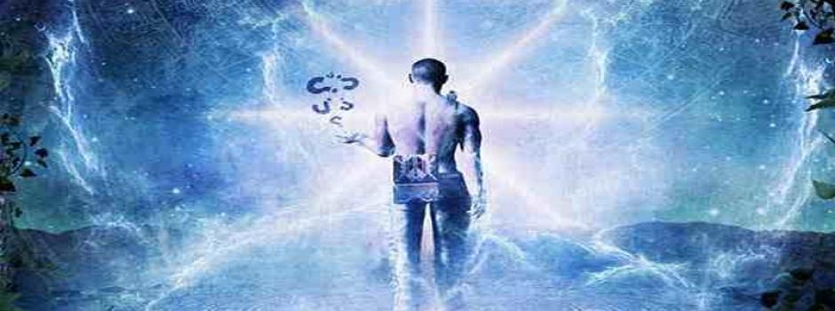 Los órganos del cuerpo y sus emociones | Universo ThetaHealing
