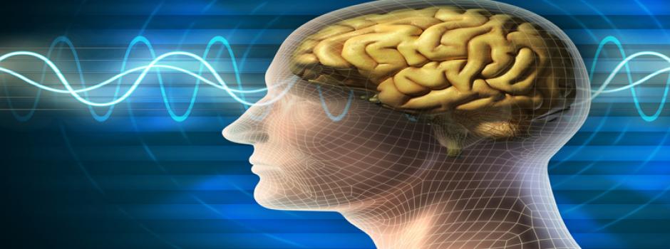 Meditación y aprendizaje | Universo ThetaHealing