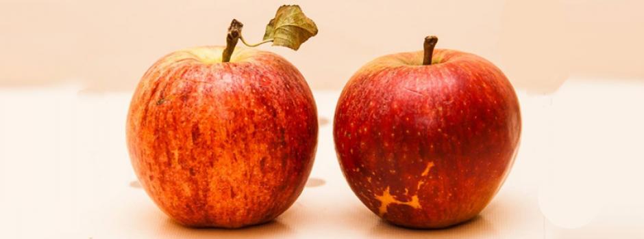 ejercicio didactico manzanas | Universo ThetaHealing